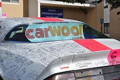 Carwoo1