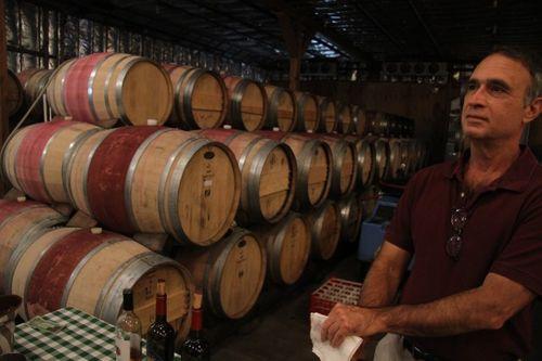 Wine at Corison Vineyard  (22)