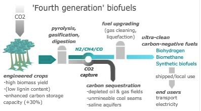 FourthGenBiofuels