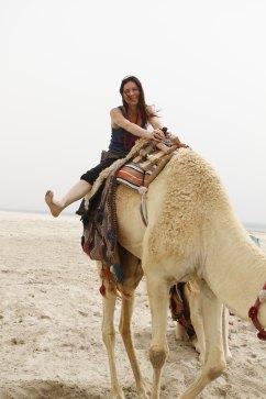Camels-desert day (48)