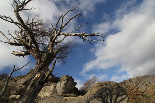 Driving Into Torres Del Paine Park (13)